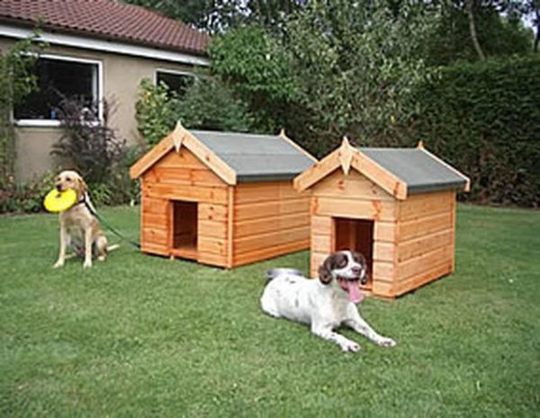 Apex Dog Kennels by Pinelap Sheds | Bradford